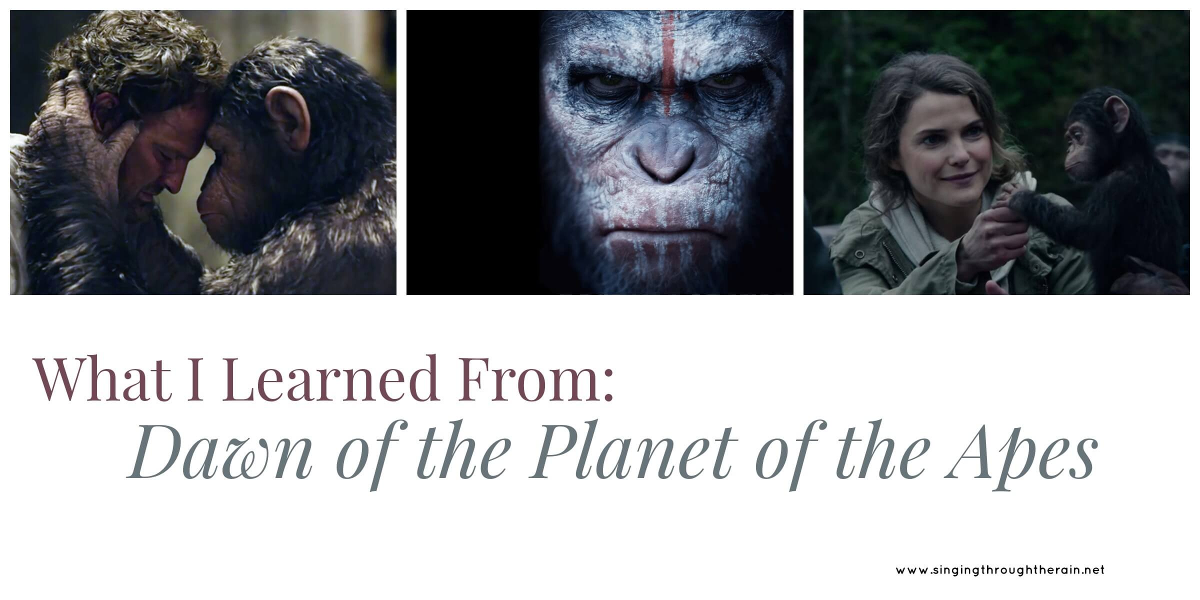 What I Learned From: Dawn Of The Planet Of The Apes