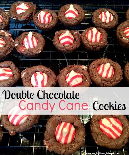 Double Chocolate Candy Cane Cookies | Singing Through the Rain